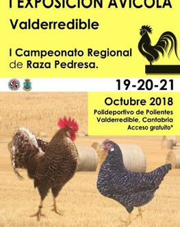 Cartel gallinas